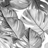 KEK Amsterdam Monstera Botanical behang