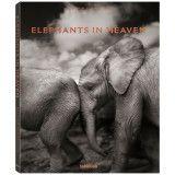 teNeues Elephants In Heaven tafelboek