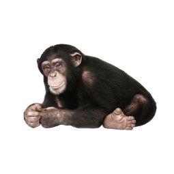 KEK Amsterdam Safari Friends Chimpanzee muursticker
