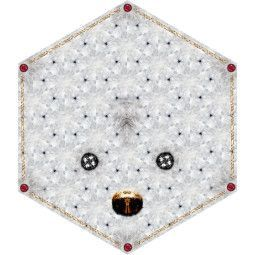 Moooi Carpets Crystal Teddy vloerkleed 185x215