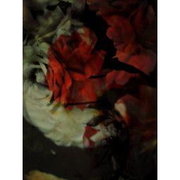 Moooi Carpets Seduction vloerkleed 300x225