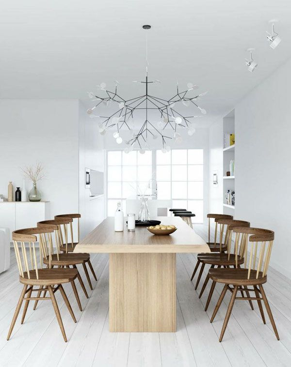https://www.flinders.be/media/wysiwyg/Magazine/licht/Heracleum-600x800.jpg